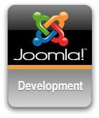 Developer Joomla